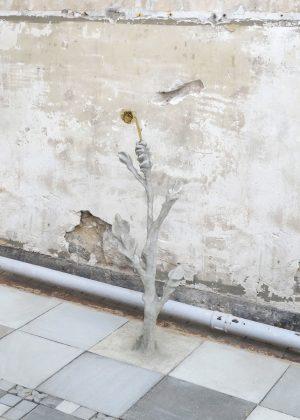 Flower n°1